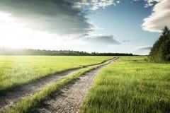 Estrada e campo à terra da grama da mola fotos de stock royalty free