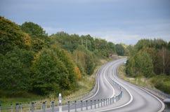 Estrada e floresta Fotografia de Stock