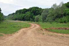 Estrada e floresta Foto de Stock Royalty Free