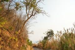 A estrada em declive Fotos de Stock