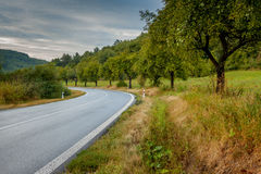 Estrada em Eslováquia Fotos de Stock