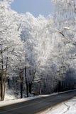 Estrada em florestas do inverno fotografia de stock