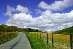 A estrada a em nenhuma parte Fotografia de Stock