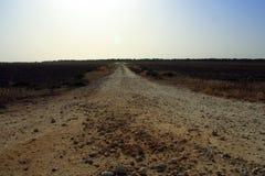 A estrada a em nenhuma parte Fotografia de Stock Royalty Free