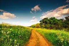 A estrada em um campo. Imagens de Stock