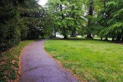 Estrada em um jardim botânico em Genebra fotos de stock