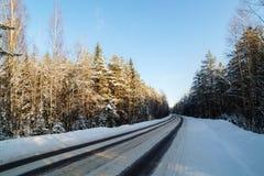 Estrada em uma floresta do inverno Imagens de Stock