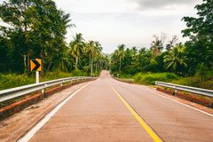 Estrada em uma ilha tropical na selva, imagem com tintin retro Imagem de Stock