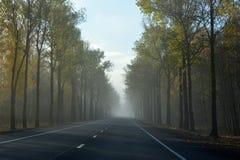Estrada em uma manhã nevoenta imagens de stock