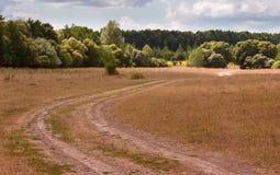 Estrada empoeirada que conduz para a floresta próxima Fotos de Stock Royalty Free