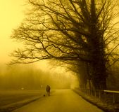 Estrada enevoada fotografia de stock