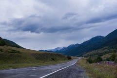 Estrada enevoada da paisagem cinemático da estrada Imagem de Stock Royalty Free