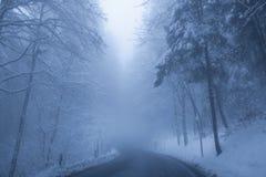 Estrada enevoada do inverno fotografia de stock royalty free