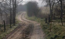 Estrada enevoada na manhã Imagem de Stock Royalty Free
