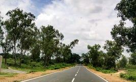 Estrada entre a floresta fotografia de stock royalty free