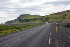 Estrada entre lupines em Islândia Imagem de Stock