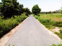 Estrada entre a natureza fotografia de stock