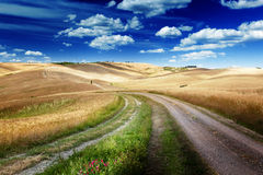 Estrada entre os campos de Toscânia, Itália foto de stock