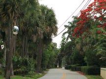 Estrada estreita bonita na vizinhança residencial foto de stock royalty free