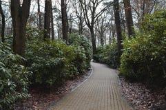 Estrada exterior do parque Fotografia de Stock Royalty Free