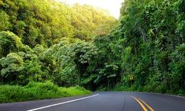 Estrada famosa a Hana preocupante com as pontes estreitas da um-pista, as voltas do gancho de cabelo e as opiniões incríveis da i Imagem de Stock