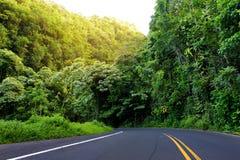 Estrada famosa a Hana preocupante com as pontes estreitas da um-pista, as voltas do gancho de cabelo e as opiniões incríveis da i Imagens de Stock