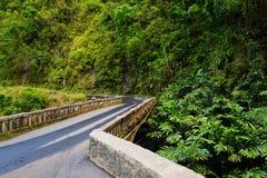 Estrada famosa a Hana preocupante com as pontes estreitas da um-pista, as voltas do gancho de cabelo e as opiniões incríveis da i Fotografia de Stock