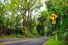 Estrada famosa a Hana preocupante com as pontes estreitas da um-pista, as voltas do gancho de cabelo e as opiniões incríveis da i Foto de Stock Royalty Free