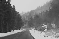 Estrada fria adiante Fotos de Stock Royalty Free