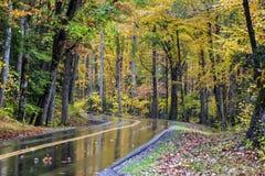 Estrada fumarento molhada da montanha no outono imagem de stock
