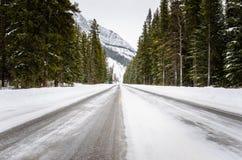 Estrada gelada através de uma floresta do pinho nas montanhas imagens de stock royalty free