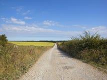 Estrada inglesa do campo e da pedra calcária no verão Foto de Stock