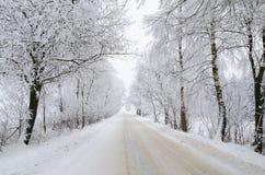 Estrada invernal com neve Fotos de Stock Royalty Free