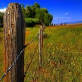 Estrada longa da cerca imagem de stock