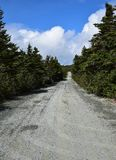 Estrada longa do cascalho que conduz através de uma floresta imagem de stock