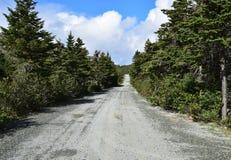 Estrada longa do cascalho que conduz através de uma floresta fotografia de stock