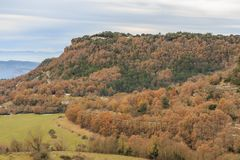 A estrada meandra através das florestas marrons no outono Fotos de Stock Royalty Free