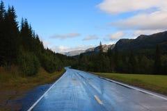 Estrada molhada Foto de Stock Royalty Free