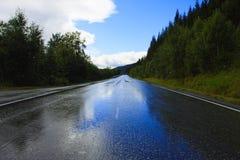 Estrada molhada Imagem de Stock Royalty Free
