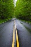 Estrada molhada reta Fotografia de Stock Royalty Free
