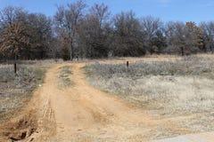 A estrada não tomada Imagem de Stock Royalty Free