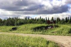 A estrada na floresta Imagem de Stock Royalty Free
