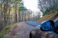 Estrada na floresta amarela do outono Imagem de Stock Royalty Free