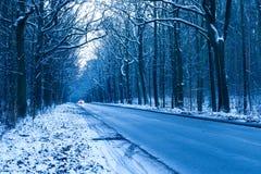 Estrada na floresta do inverno Foto de Stock Royalty Free