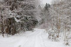 Estrada na floresta nevado foto de stock royalty free