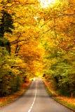 Estrada na madeira Fotografia de Stock