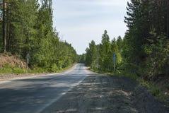 A estrada na madeira Imagem de Stock Royalty Free
