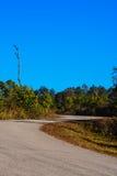 Estrada na montanha de Phu Rua Foto de Stock