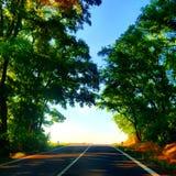 Estrada na natureza Foto de Stock Royalty Free