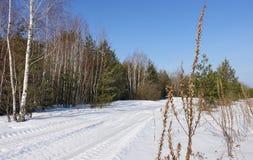 A estrada na neve que conduz a uma floresta imagem de stock